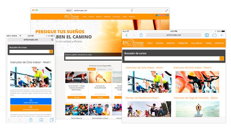 Actualización y Optimización SEO página web