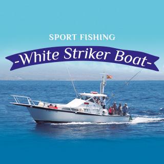 White Striker - Diseño Web Gran Canaria